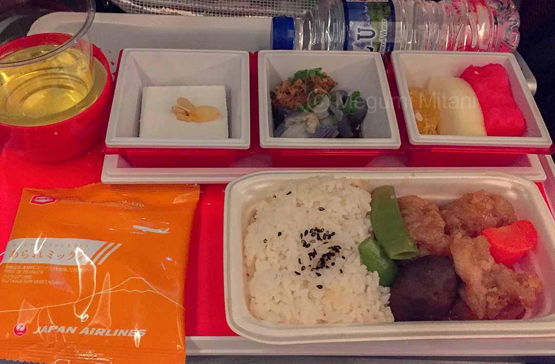JAL-Singapore2(c)Megumi Mitani