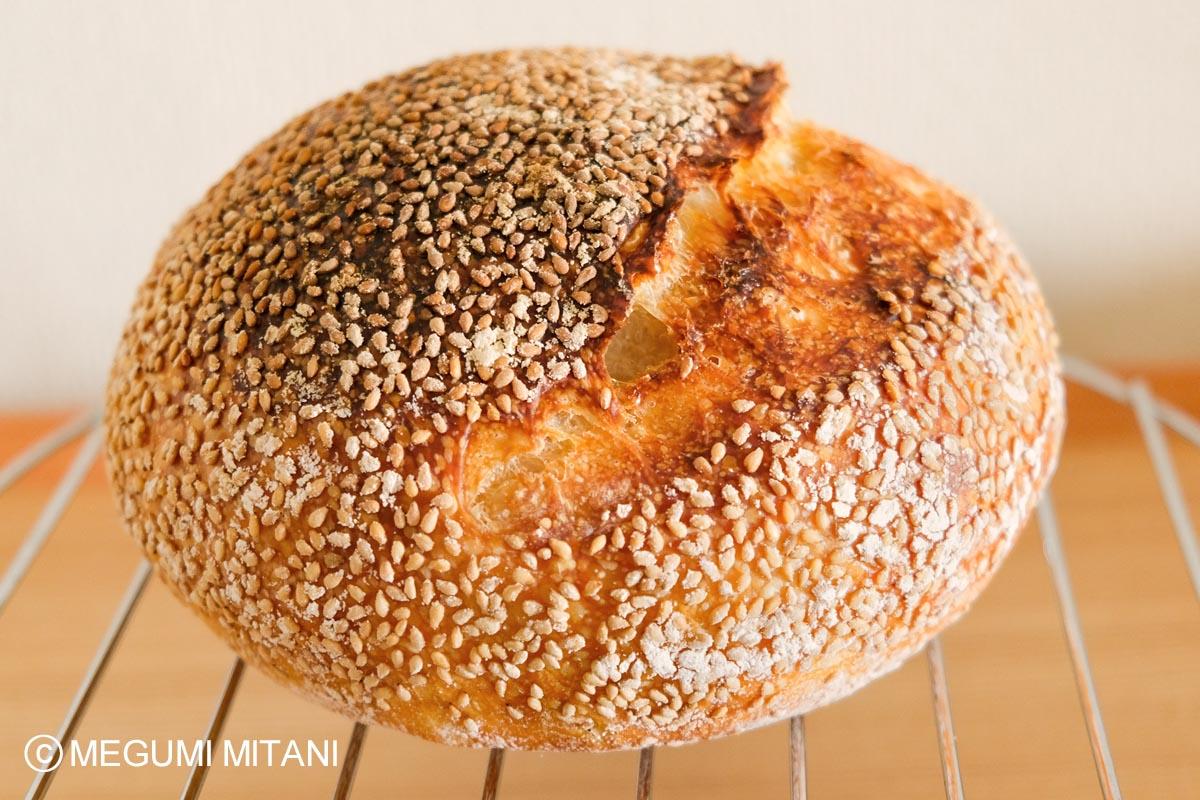nomad-bread(c)Megumi Mitani