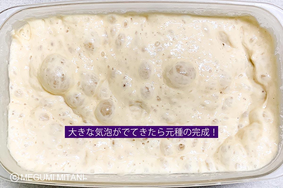 レーズン酵母元種完成(c)Megumi Mitani